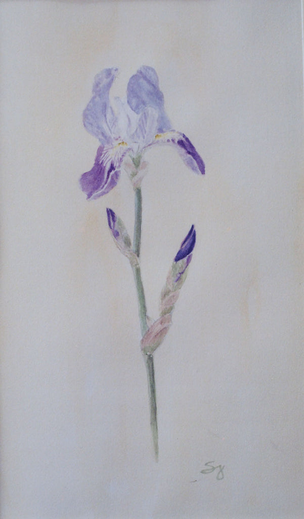 One Beautiful Purple Iris | Purple Iris Painting