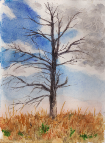 "Tree with Clouds 5.25"" x 7.25"" Watercolor"