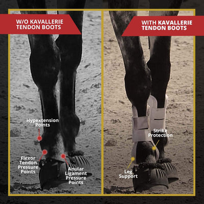 Classic Tendon Boots - Kavallerie