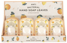 Hand Soap Leaves