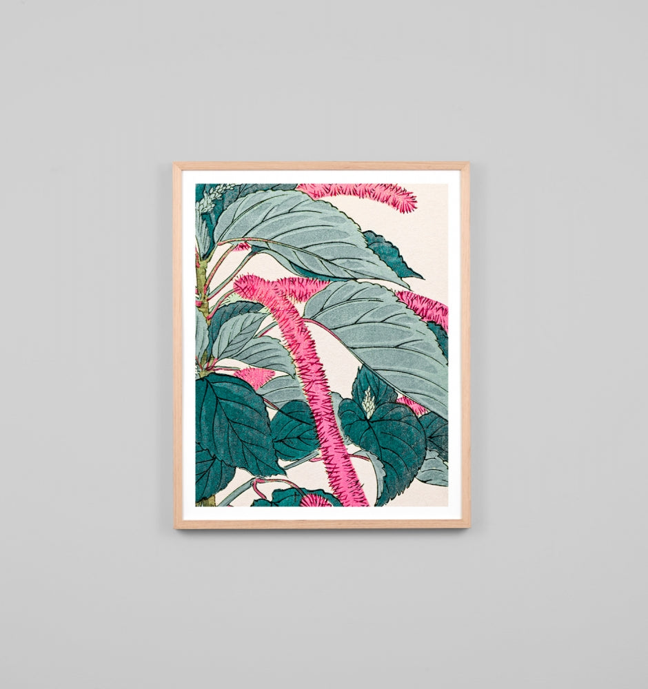 Firetail Woodblock Artwork