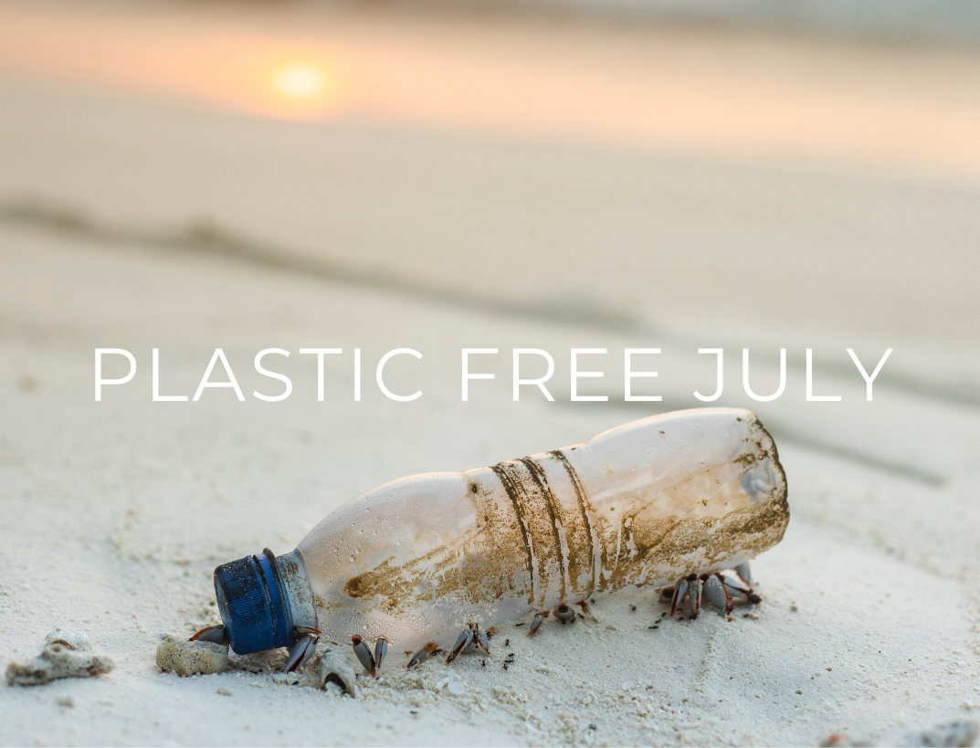How To Take Part in Plastic Free July