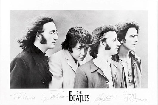Beatles, The - Signatures Poster