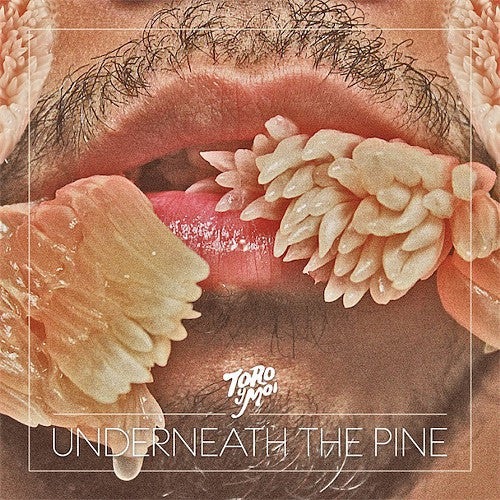Toro Y Moi - Underneath The Pine LP*