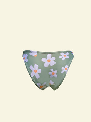 Daisy Scoop Brief - Sage