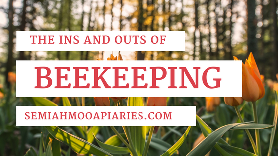 Learn About Beekeeping