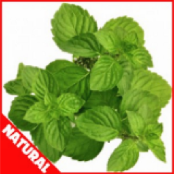 Flavor West Spearmint (Natural)
