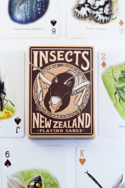Insects of New Zealand playing card deck (2nd edition)