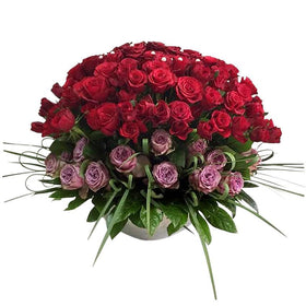 Luxury Purple And Red Rose In Vase