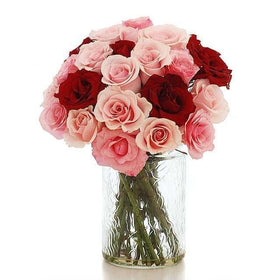 2 Dozen Of Red And Pink Roses In A Glass Vase