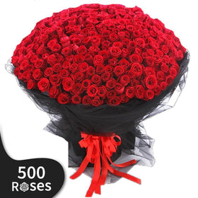 500 Days of Blooming Roses