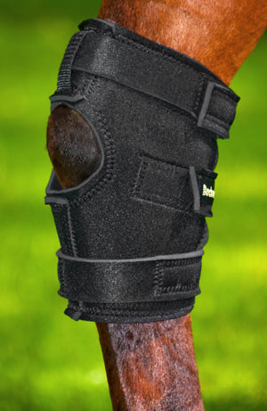 Hock Brace with Hole