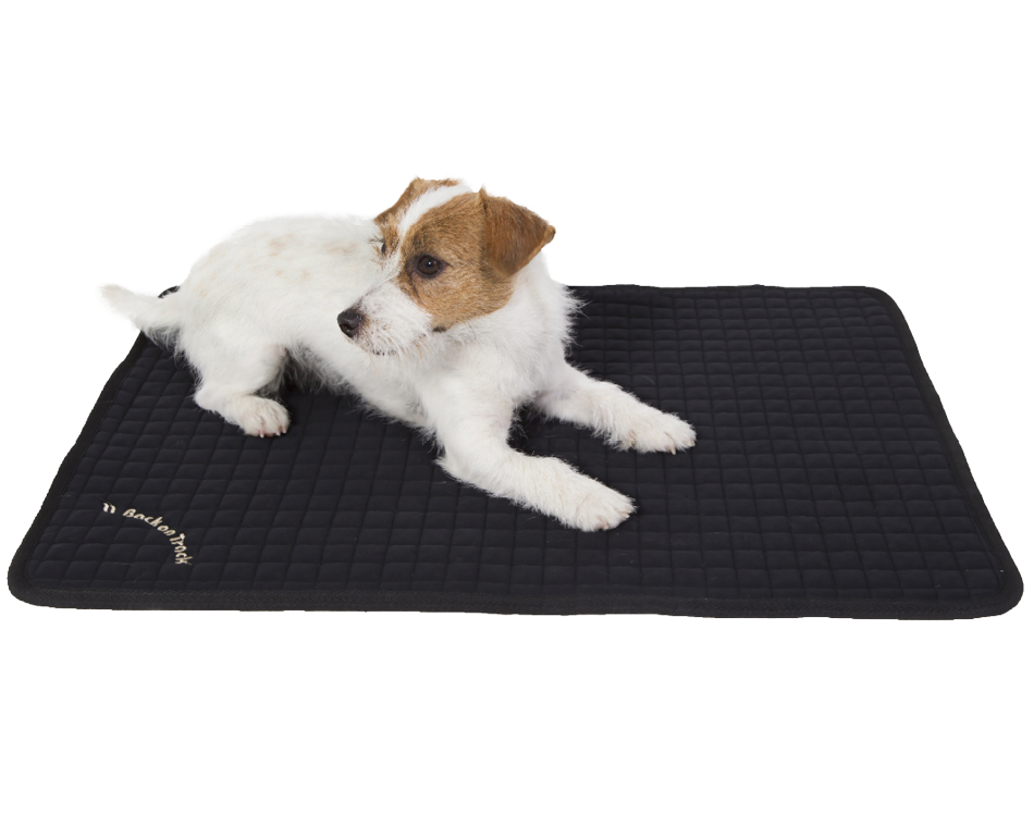 Dog Mattress Allround