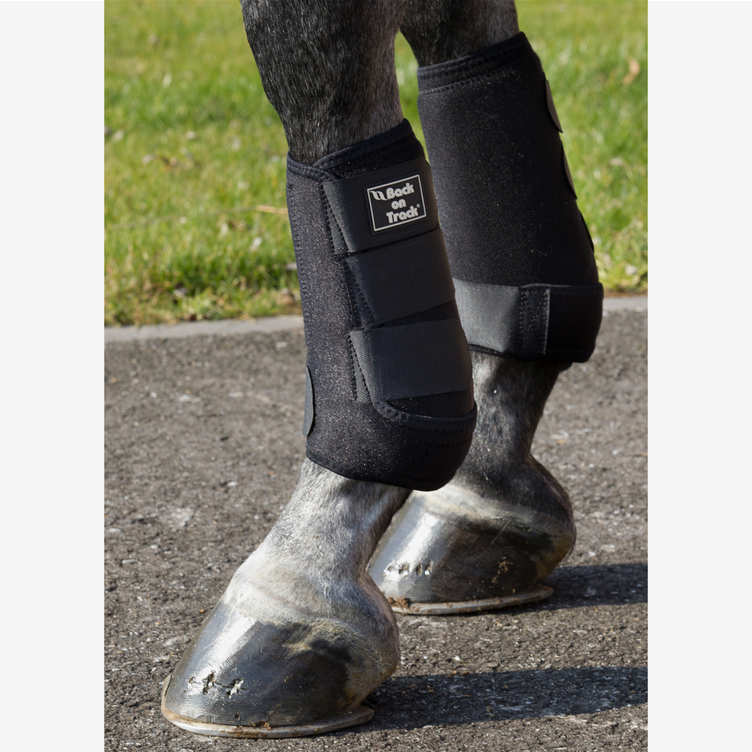 Royal Exercise Boots