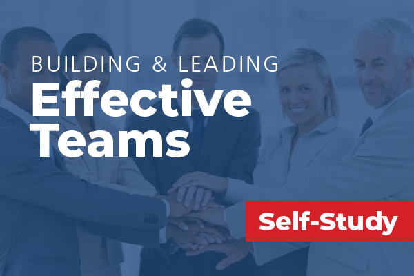Building and Leading Effective Teams