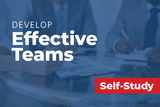 A physician health care executive's roadmap to developing effective teams