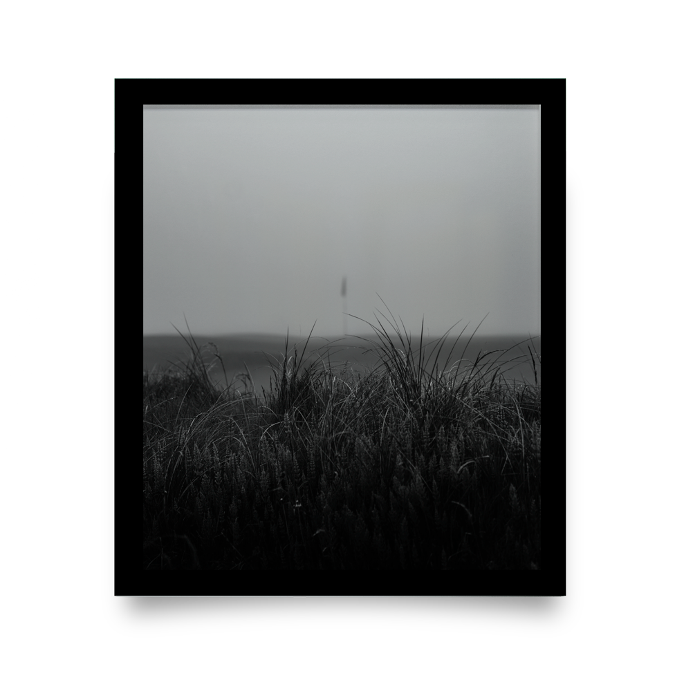 Golf Art - Fog + Fescue Giclée Print (Black Wood Frame)