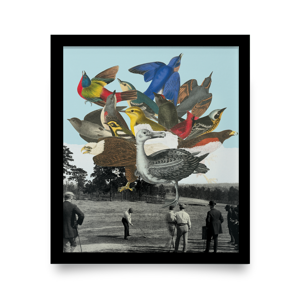 Golf Art - Birdie Ball Giclée Print (Black Wood Frame)