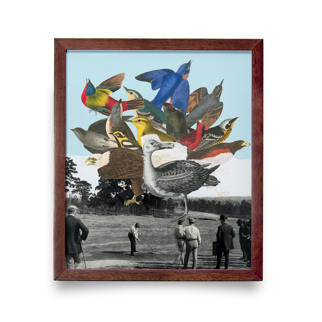 Golf Art - Birdie Ball Giclée Print (Walnut Wood Frame)