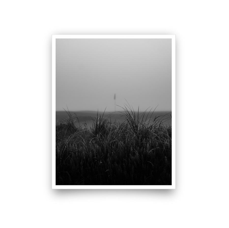 Golf Art - Fog + Fescue Giclée Print (No Frame)
