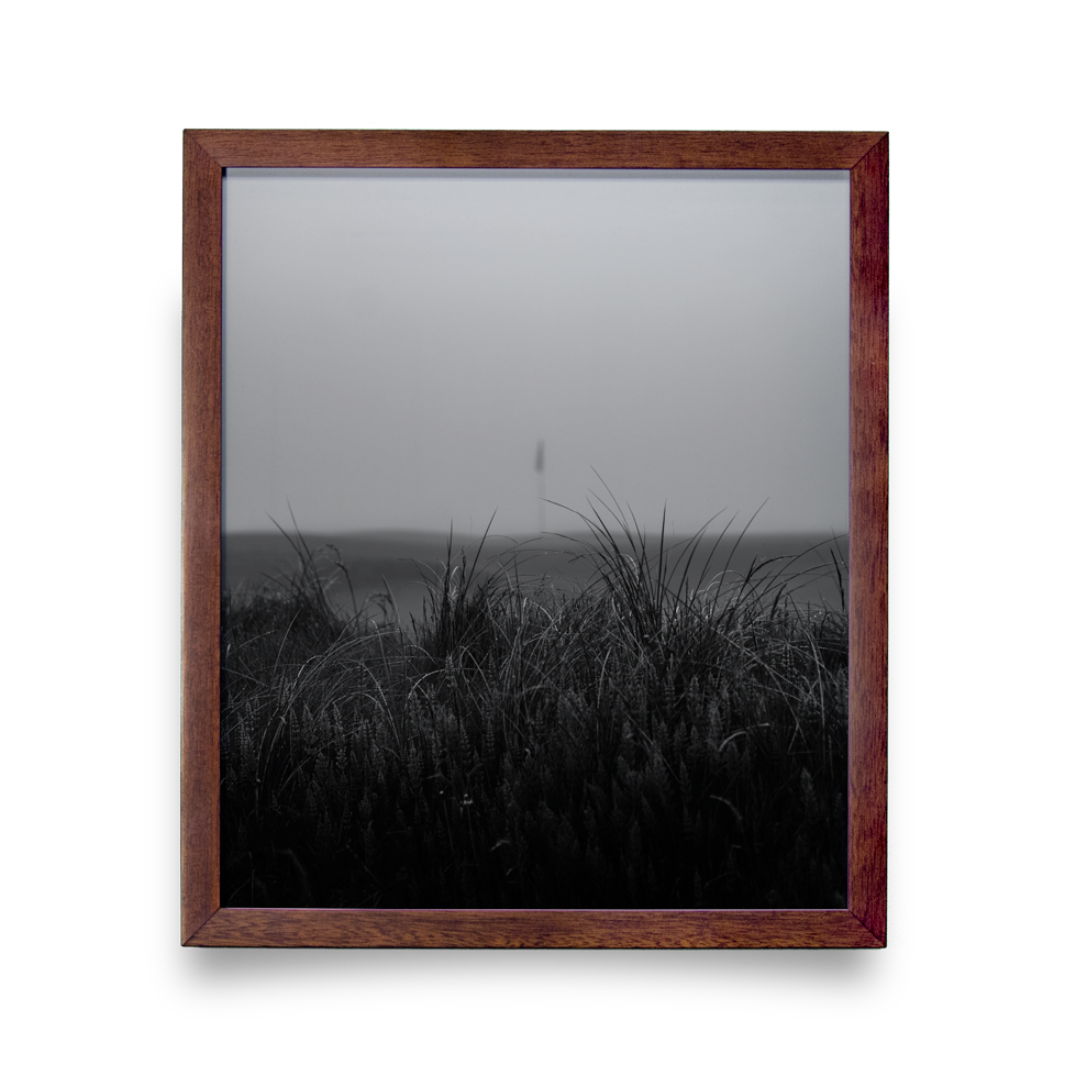 Golf Art - Fog + Fescue Giclée Print (Walnut Wood Frame)