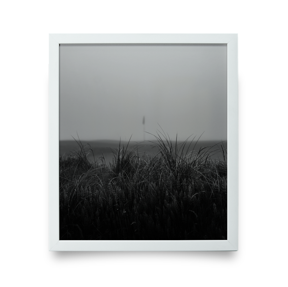 Golf Art - Fog + Fescue Giclée Print (White Wood Frame)