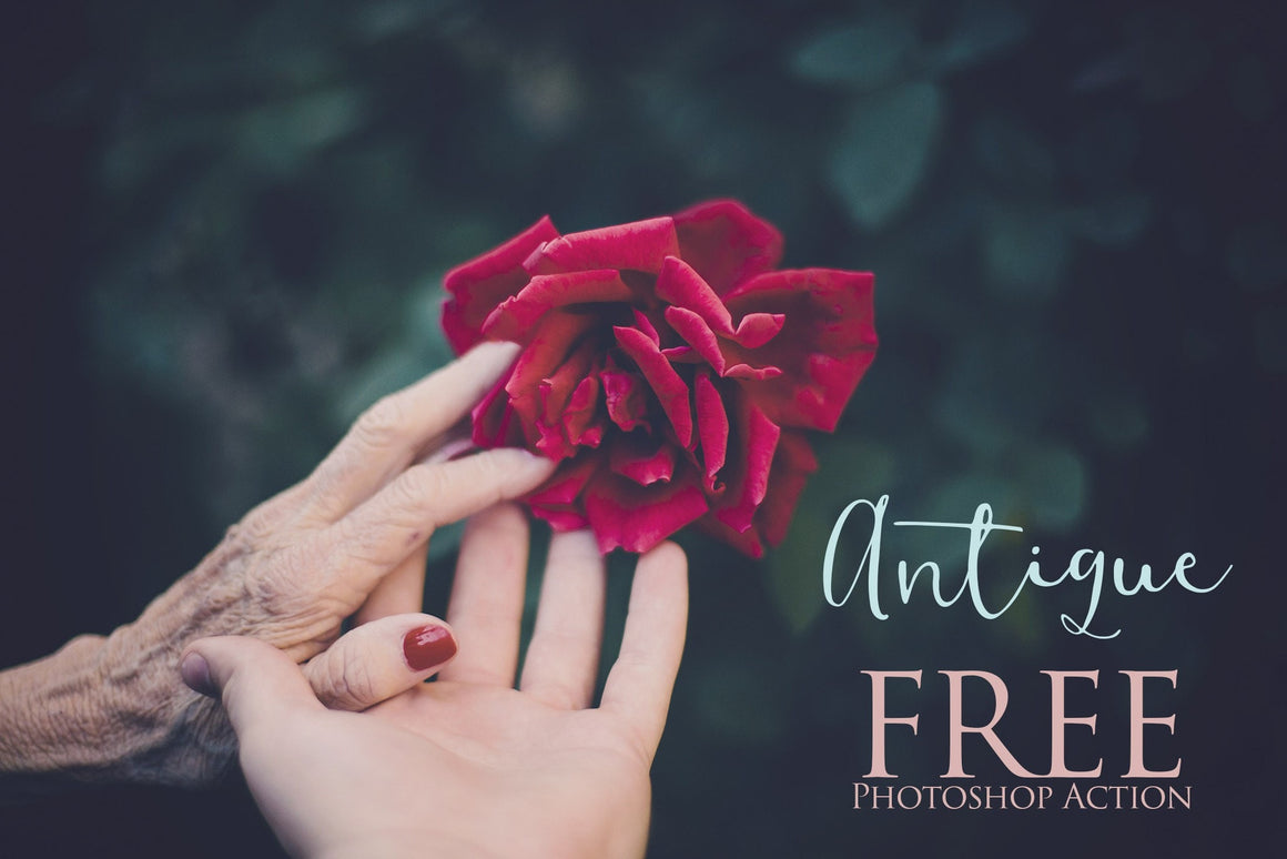 Antique Photoshop Action: FREE - Uplift Photoshop Actions, Photoshop Overlays and Lightroom Presets