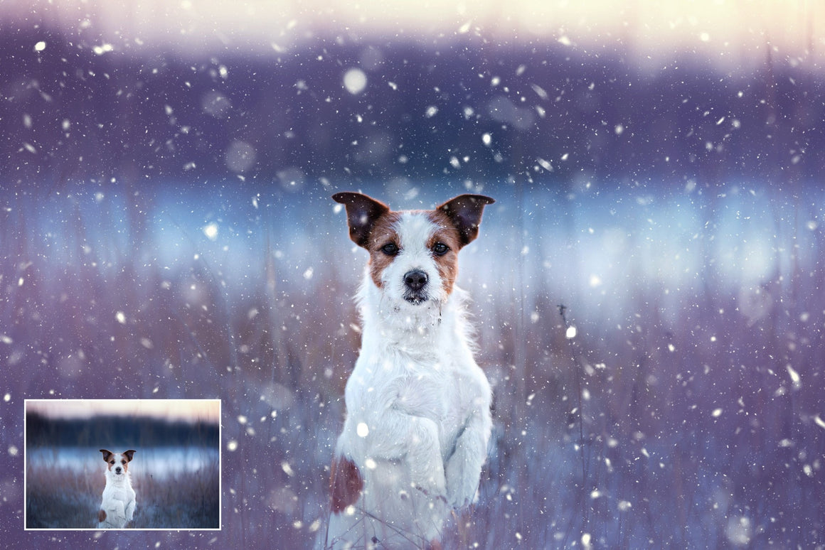Let It Snow Photoshop Action - Uplift Photoshop Actions, Photoshop Overlays and Lightroom Presets