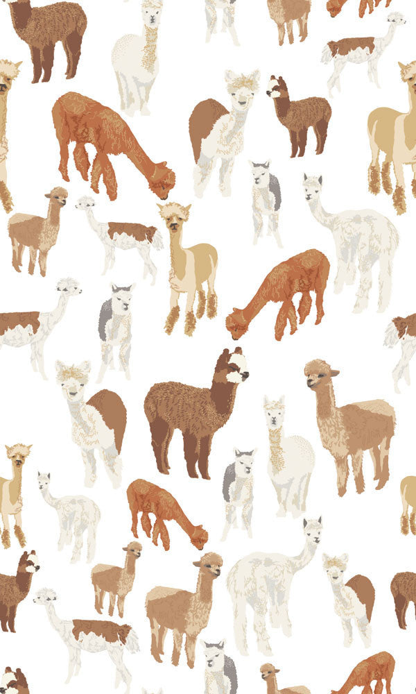 Alpaca Wallpaper - WYNIL by NumerArt Wallpaper and Art