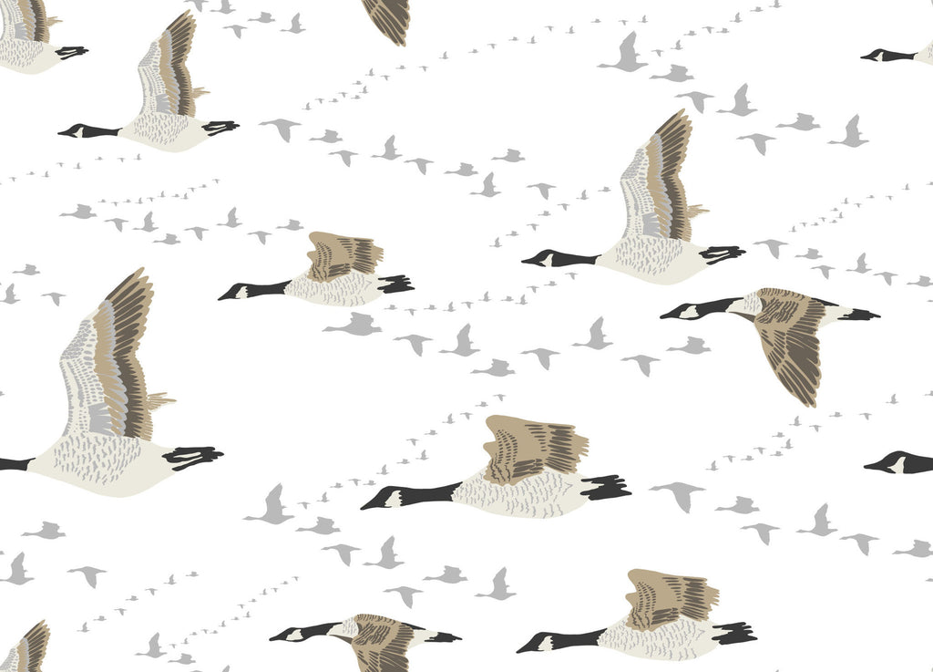 Canada Geese Wallpaper - WYNIL by NumerArt Wallpaper and Art