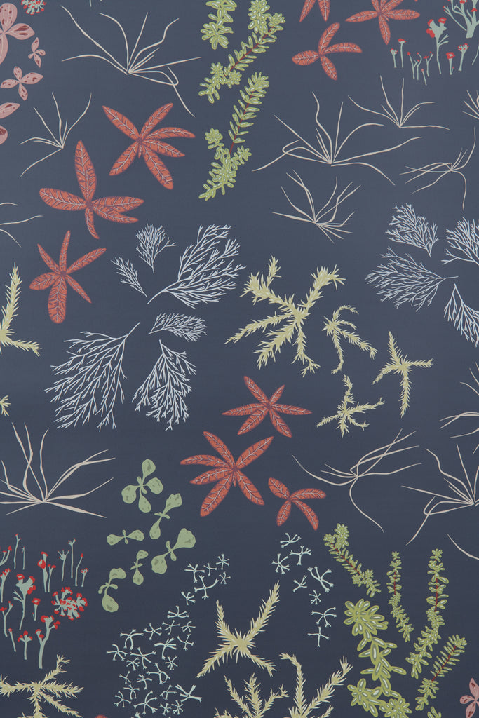 Bog Charcoal Wallpaper - WYNIL by NumerArt Wallpaper and Art
