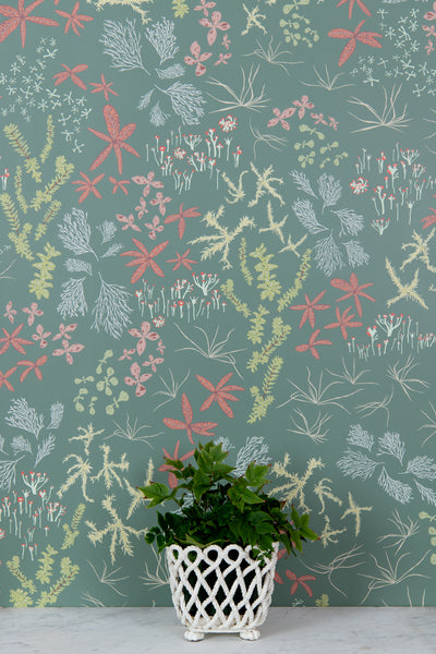 Bog Rosemary Wallpaper - WYNIL by NumerArt Wallpaper and Art