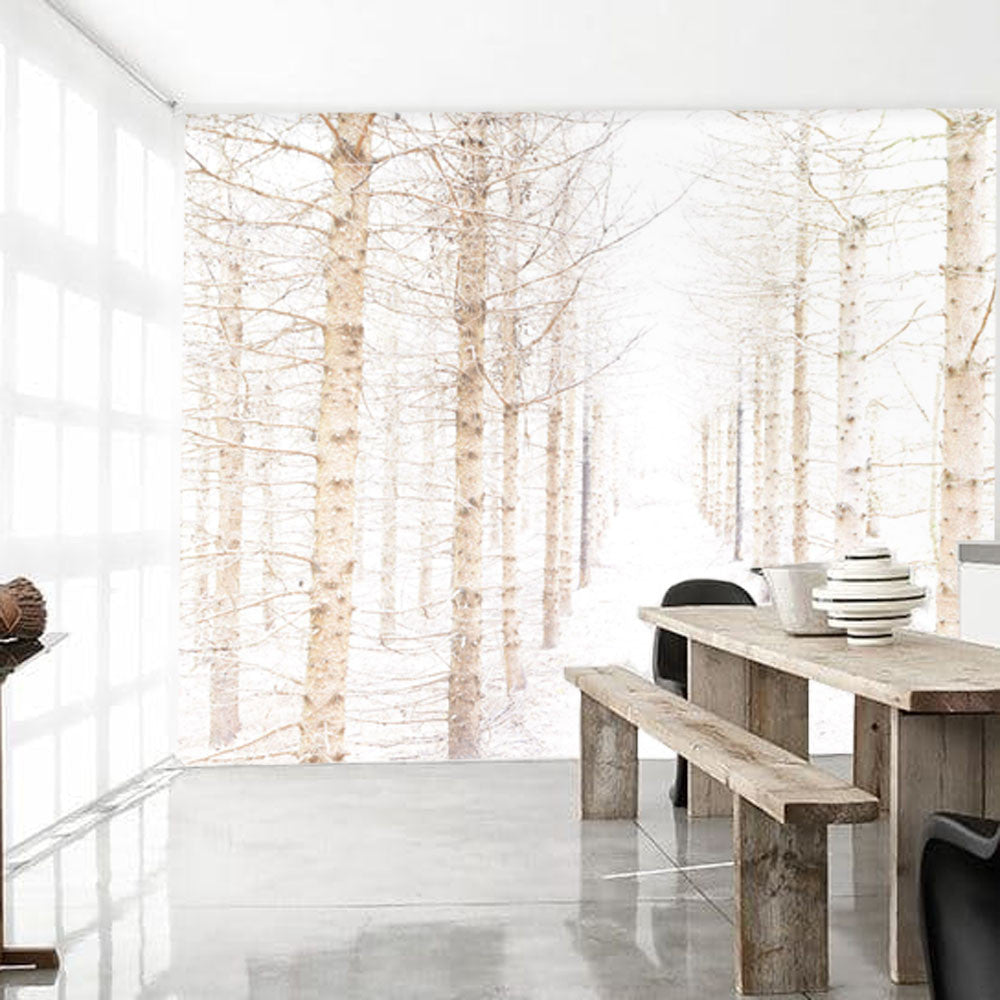 Warm Pale Pines Mural - WYNIL by NumerArt Wallpaper and Art