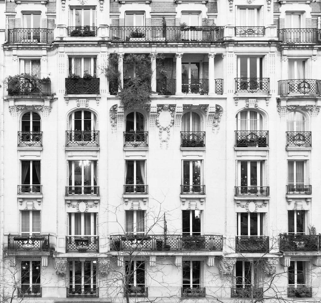 The Paris Windows Mural