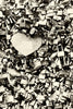 The Love Paris Padlocks Sepia Mural - WYNIL by NumerArt Wallpaper and Art