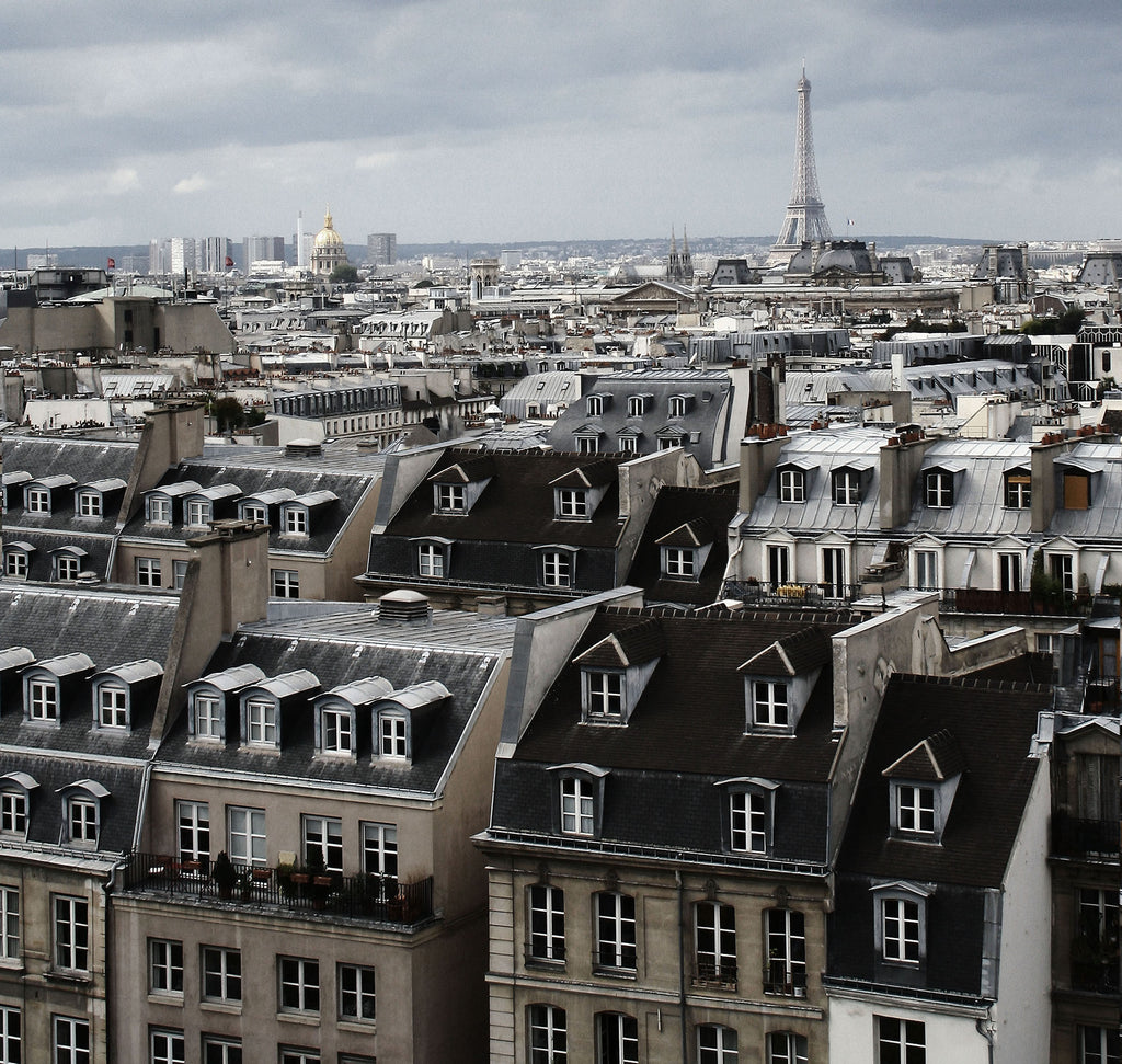 Paris Rooftops Mural - WYNIL by NumerArt Wallpaper and Art