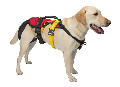 CMC K9 LifeSaver Harness