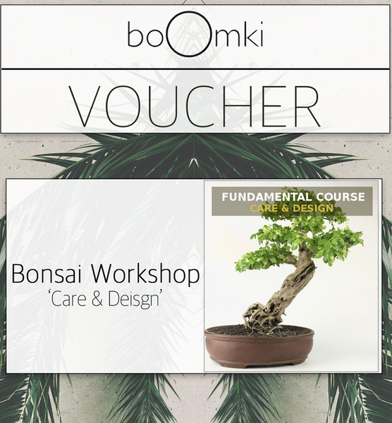 "Voucher for Bonsai Workshop: ""Care & Design"" Workshop B o o m k i  - B o o m k i"
