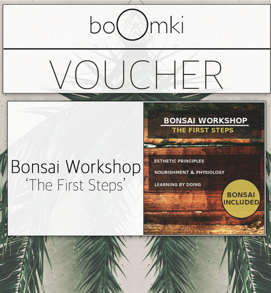 "Voucher for Beginner Workshop: ""First Steps"" Workshop B o o m k i  - B o o m k i"
