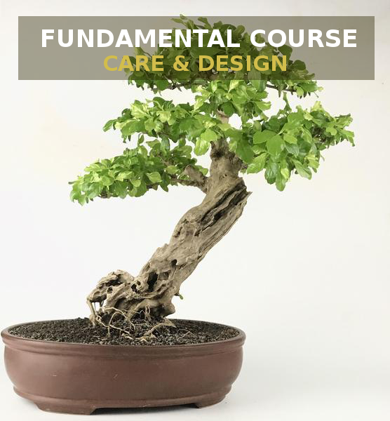 Fundamental Course: Care & Design  B o o m k i  - B o o m k i