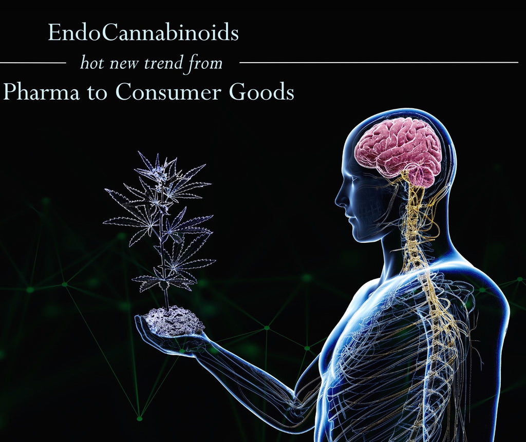 EndoCannabinoids: new hot trend from Pharma to Consumer goods