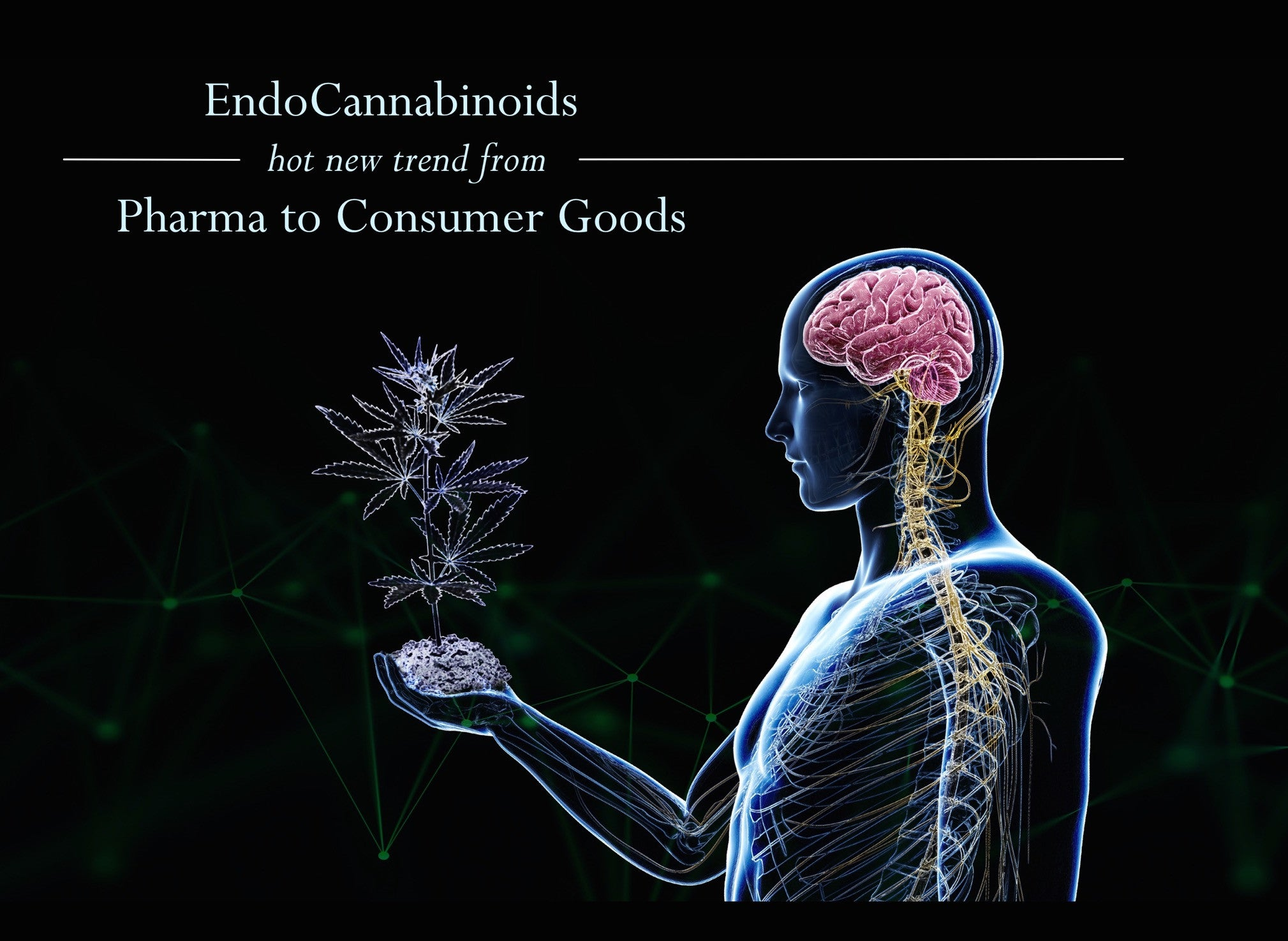 Endocannabinoids cannabinoids hot new trend from Pharma to consumer goods