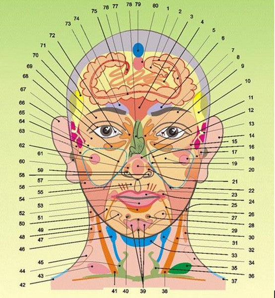 Face acupuncture reflexology health problem on your face