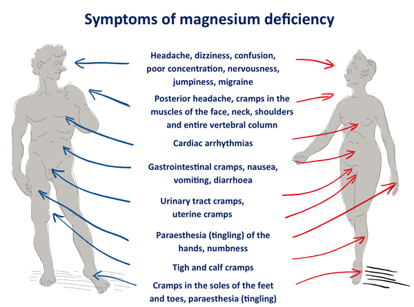 Magnesium deficiency headache insomnia nervous breakdown, burnout, fatigue syndrome