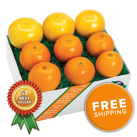 Assorted Citrus Boxes