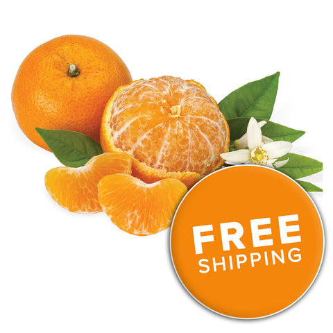 Florida Baby O Mandarins<br>(Choose a Size)