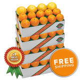 Florida Navel Oranges & Ruby Red Grapefruit<br>(Choose a Size)