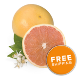 Florida Ruby Red Grapefruit<br>(Choose a Size)