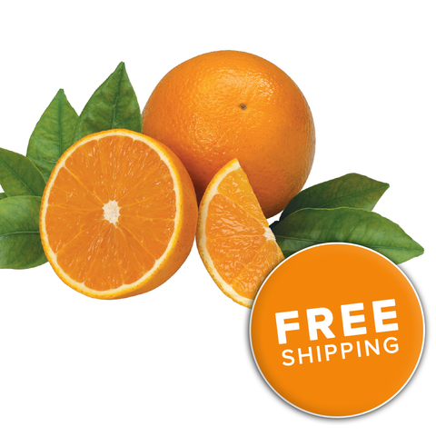 Florida Valencia Oranges<br>(Choose a Size)