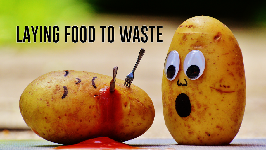 Laying Less Food to Waste: 10 Facts To Know